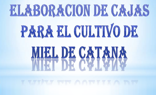 ELABORACION DE CAJAS PARA PRODUCCIÓN DE MIEL DE CATANA.